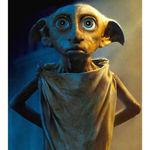 Avatar for Dobby